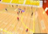 Handball 3D software